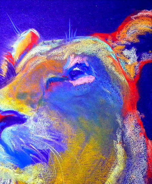 Wall Art - Painting - Funky Lioness Jungle Queen by Sue Jacobi