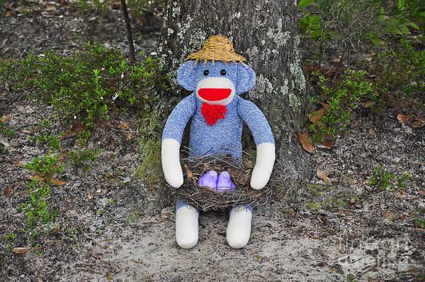 Sock Monkey Photograph - Funky Monkey - Purple Peeps by Al Powell Photography USA