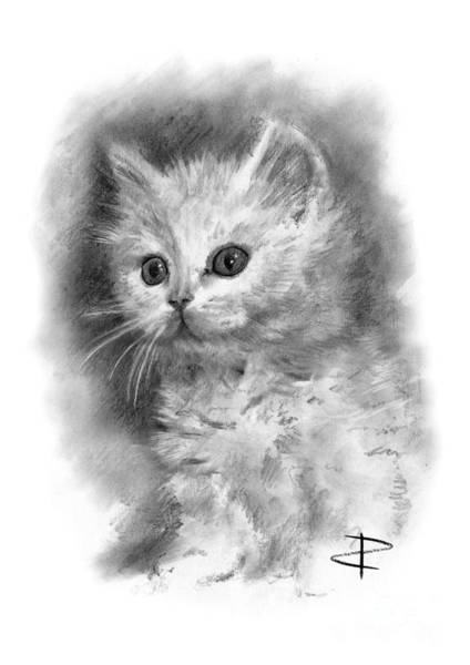 Pussycat Drawing - Furball by Paul Davenport