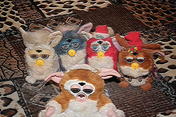 Photograph - Furby - Escape From The Closet by Ericamaxine Price