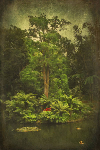 Digital Art - Furnas Garden by Eduardo Tavares