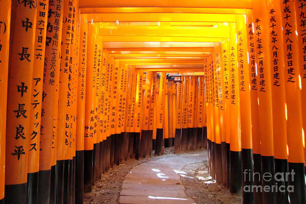 Wall Art - Photograph - Fushimi Inari by Delphimages Photo Creations