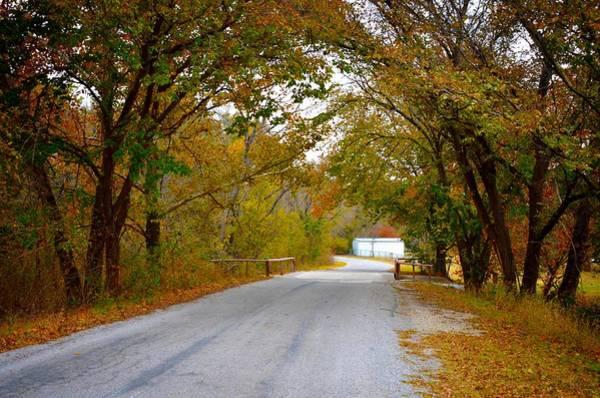 Photograph - Gainesville 9451 by Ricardo J Ruiz de Porras