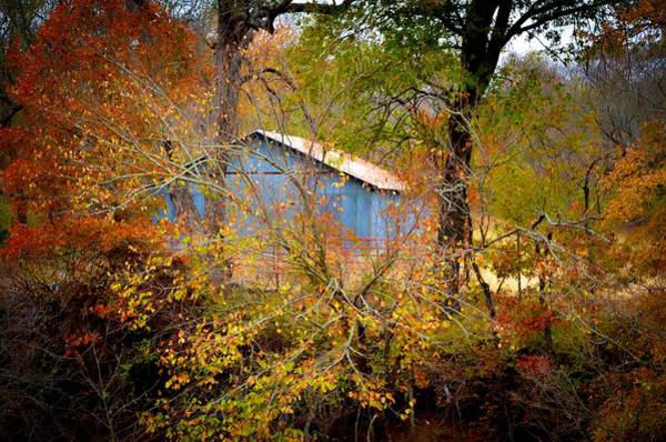 Photograph - Gainesville 9496 by Ricardo J Ruiz de Porras