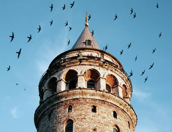 Galata Photograph - Galata Tower Surrounded By Birds At by Gary Yeowell