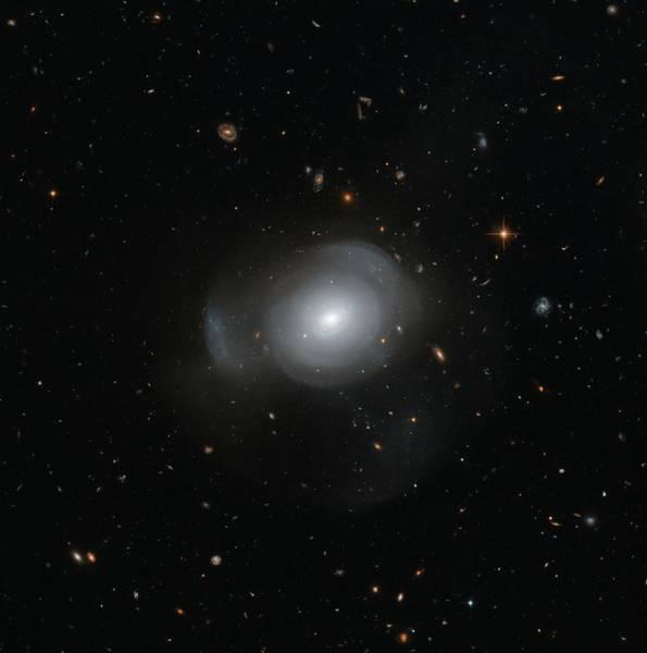 Mergers Wall Art - Photograph - Galaxy Pgc 6240 by Nasa/esa/stsci/judy Schmidt /science Photo Library