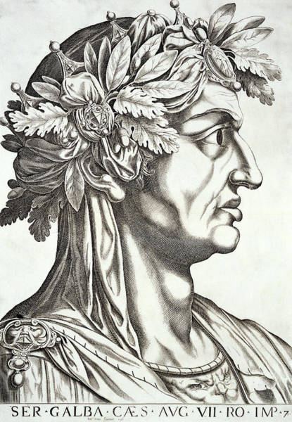 Roman Soldier Drawing - Galba Caesar  by Italian School