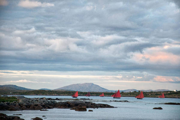 Photograph - Galway Hookers by Rob Hemphill