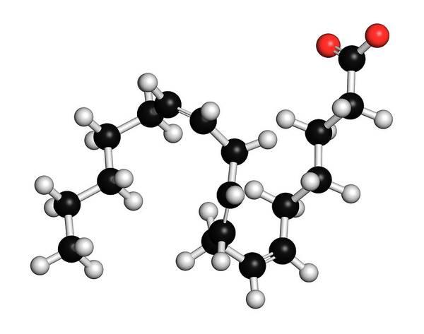Wall Art - Photograph - Gamma-linolenic Acid Fatty Acid Molecule by Molekuul/science Photo Library