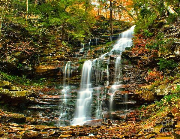Photograph - Gangoa Falls - Ricketts Glen by Nick Zelinsky