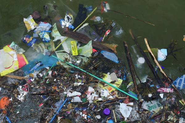 Litter Photograph - Garbage Floating In Seawater by Robert Brook