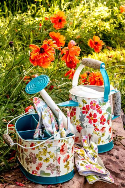 Photograph - Garden Color by Teri Virbickis
