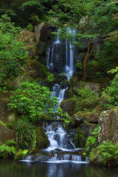 Photograph - Garden Falls by Darren  White