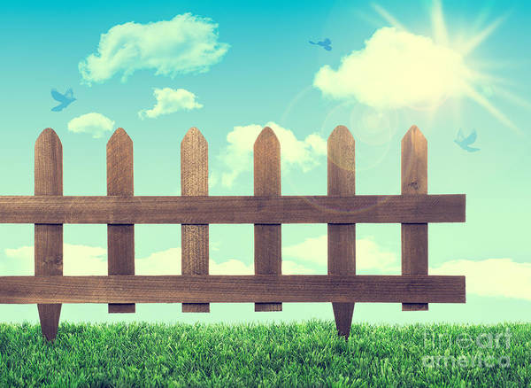 Allotment Wall Art - Photograph - Garden Fence by Amanda Elwell
