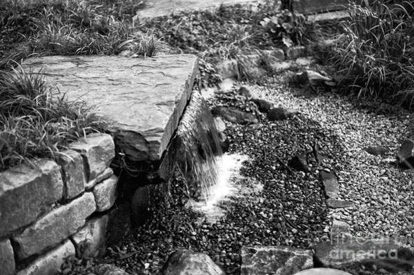 Photograph - Garden Fountain Mono by John Rizzuto