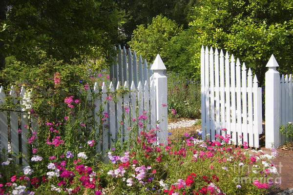Photograph - Garden Gate by Jill Lang