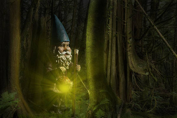 Photograph - Garden Gnome Traveling Through The Forest At Night by Randall Nyhof