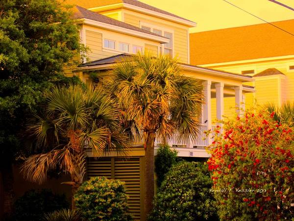 Photograph - Garden Light At Isle Of Palms by Kendall Kessler