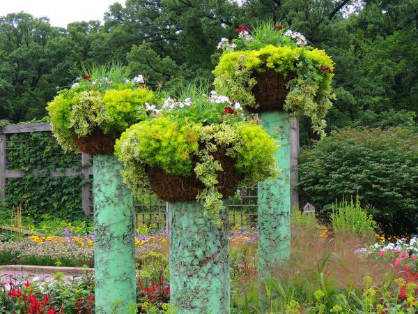 Wall Art - Photograph - Garden Magic by Teresa Schomig