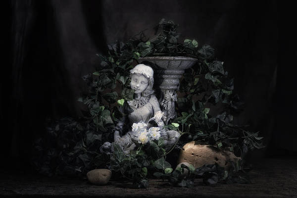 Wall Art - Photograph - Garden Maiden by Tom Mc Nemar