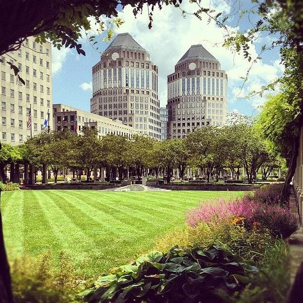 City Scenes Wall Art - Photograph - Garden by Mike Maher