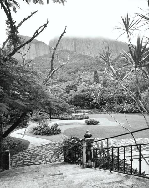 Curve Photograph - Garden Of Antonio Braga In Rio De Janeiro by Tom Leonard