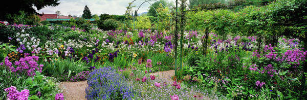 Giverny Photograph - Garden Of Claude Monets House, Giverny by Panoramic Images