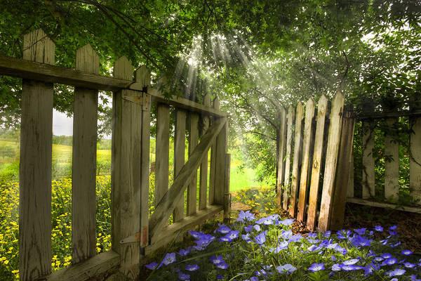Wall Art - Photograph - Garden Of Eden by Debra and Dave Vanderlaan