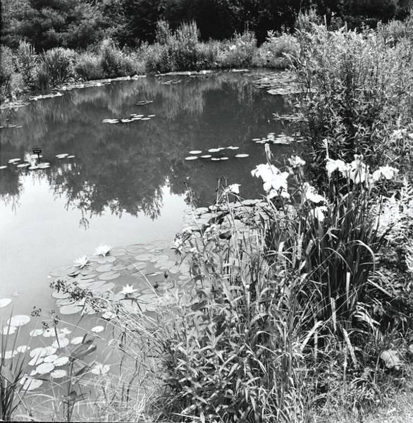 Landscape Architecture Photograph - Garden Pond by Ralph Bailey