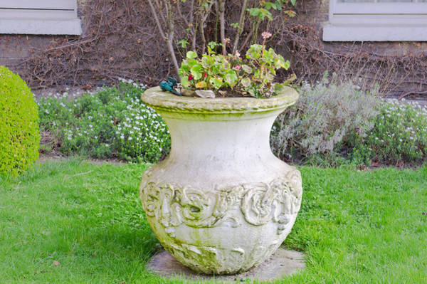 Clay Pot Photograph - Garden Pot by Tom Gowanlock