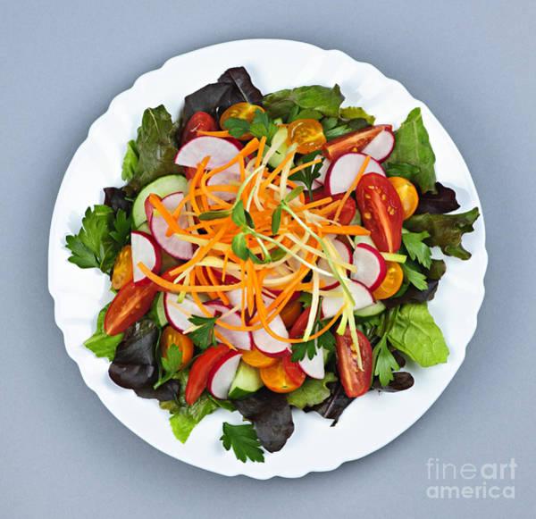 Wall Art - Photograph - Garden Salad by Elena Elisseeva