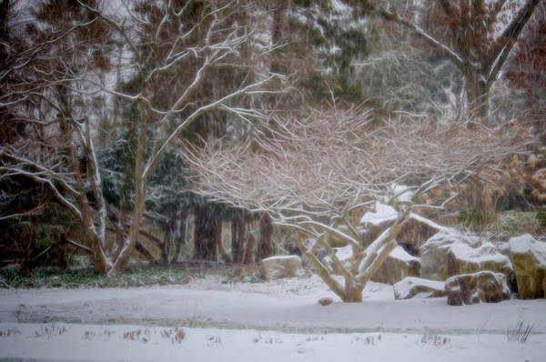 Garden Scene During Winter Snow At Sayen Gardens 2 Art Print
