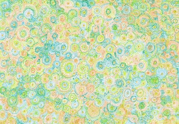 Organic Garden Drawing - Garden - #ss14dw056 by Satomi Sugimoto