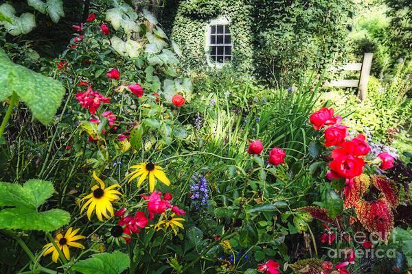 Wall Art - Photograph - Garden State Dream Garden by George Oze