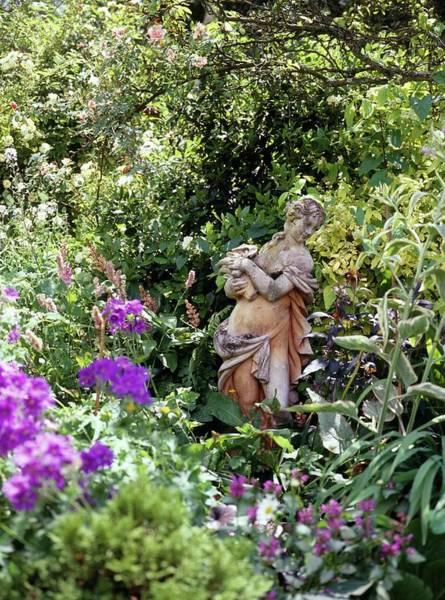 Finch Photograph - Garden Statue by Rachel Warne/science Photo Library