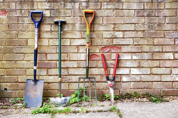 Brick Wall Photograph - Garden Tools by Michael Phillips