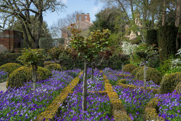 Filoli Photograph - Garden View by Diana Weir