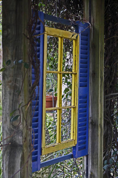 Photograph - Garden Window by Lily K