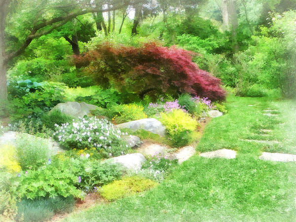 Photograph - Garden With Japanese Maple by Susan Savad