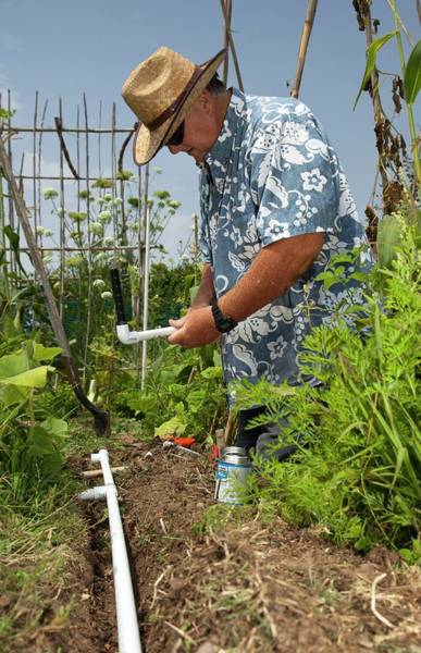 Eco-system Photograph - Gardener Making Irrigation System by Jim West
