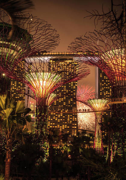 Fireworks Display Wall Art - Photograph - Gardens By The Bay by Kelly Cheng Travel Photography