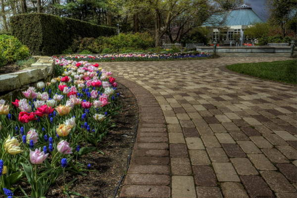Photograph - Gardens In The Park by David Dufresne