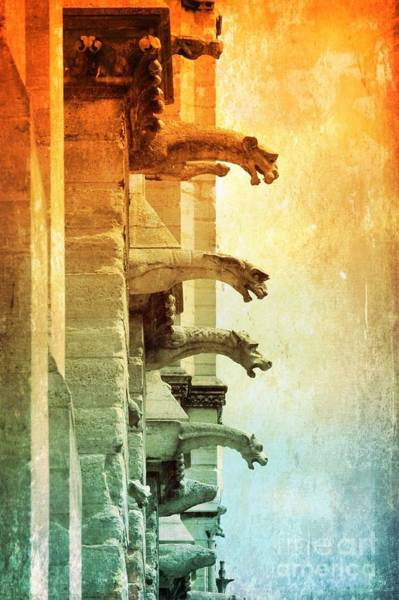 Photograph - Gargoyles With Textures And Color by Carol Groenen