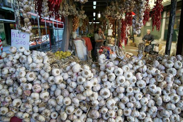 Medicinal Photograph - Garlic On Sale In Porto Street Market by Sinclair Stammers