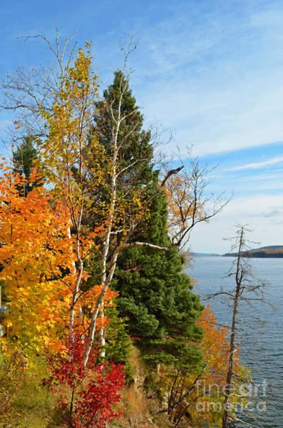 Quebec City Digital Art - Gaspe Canada Autumn Colors by Eva Kaufman