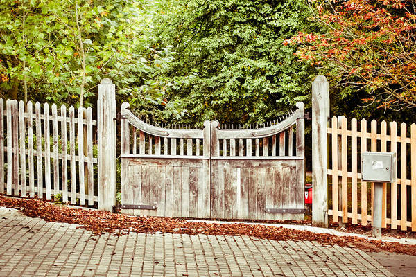 Annual Photograph - Gate In Autumn by Tom Gowanlock