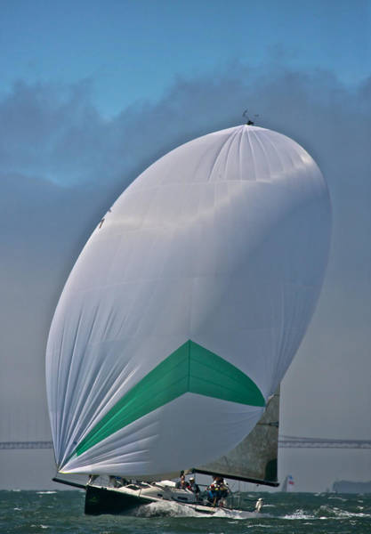Photograph - Gate Spinnaker by Steven Lapkin