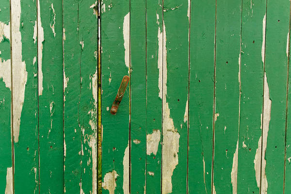 Photograph - Gate To The Garden by William Jobes