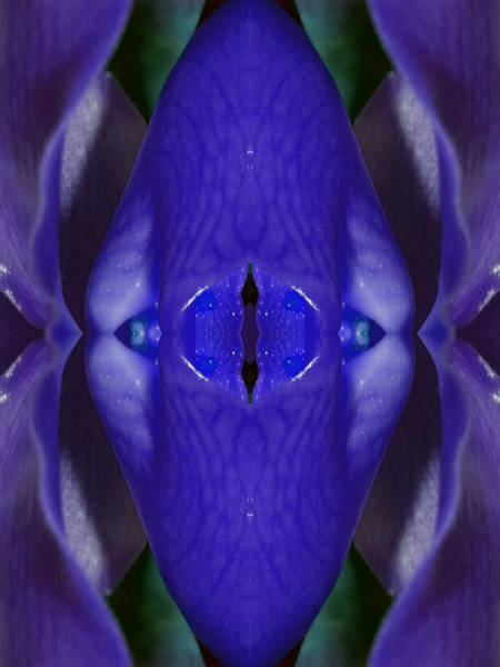 Essence Digital Art - Gatekeeper Of The Sacred Chamber by Marie-Louise Svensson