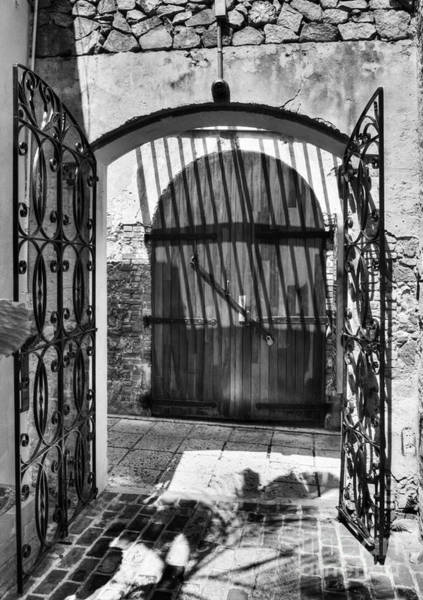 Photograph - Gates Of Saint Thomas 2 Bw by Mel Steinhauer